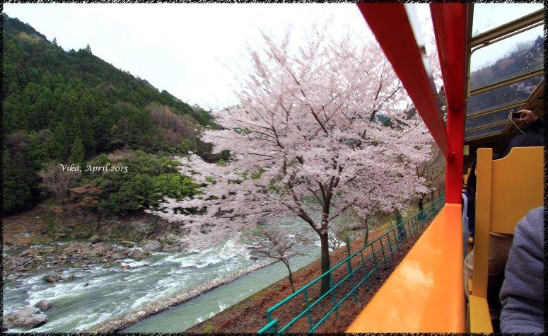 View at Sagano Railway #3